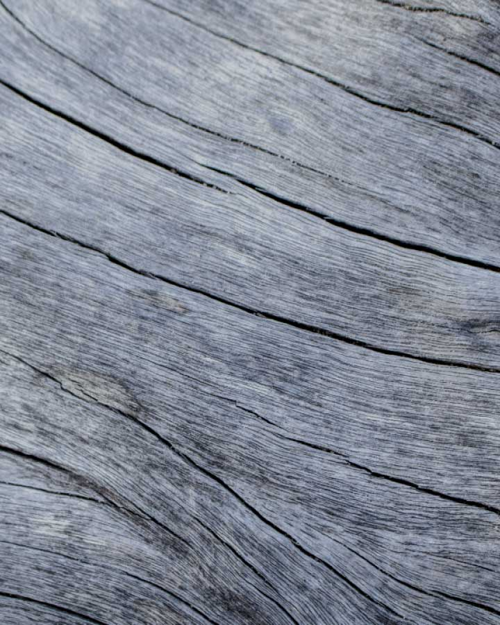 Vincent weathered bark